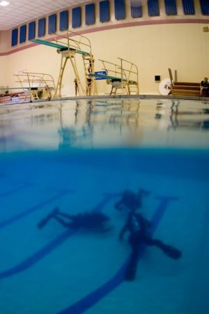 diving in a pool