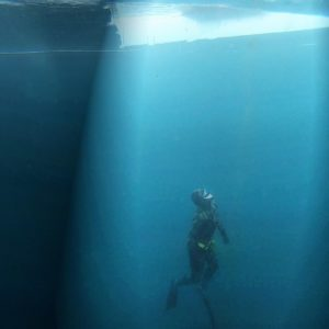 ice dive alaska scuba freedive
