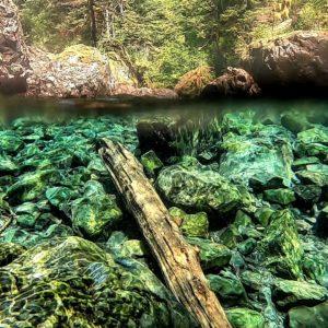 waterfall dive alaska underwater photo excursions travel