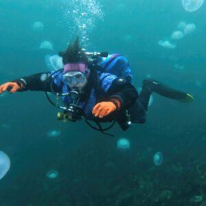 Diving in a Jellyfish Bloom in Alaska